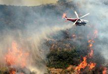 امریکہ میں آگ بے قابو، ایمرجنسی نافذ