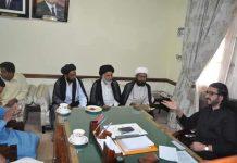 شیعہ علماء کونسل پنجاب کے وفد کی ڈپٹی اسپیکر پنجاب دوست محمد مزاری سے ملاقات