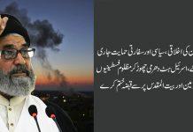 غزہ پراسرائیلی جارحیت وسفاکیت اُمت مسلمہ کےلئے لمحہ فکریہ ہے، قائد ملت جعفریہ علامہ ساجدنقوی
