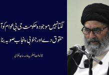 لگتا نہیں موجودہ حکومت جی بی عوام کو آئینی حقوق دے اور جنوبی پنجاب صوبہ بنائے،قائد ملت علامہ ساجد نقوی