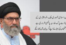 پاکستان اسلامی جمہوری ملک، خود مختاری کےلئے دباﺅ سے پاک خارجہ پالیسی ضروری ہے ، قائد ملت جعفریہ
