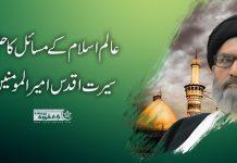 عالم اسلام کے تمام مسائل کاحل سیرت اقدس امیر المومنینؑ علی ابن ابی طالب ہے قائد ملت جعفریہ پاکستان