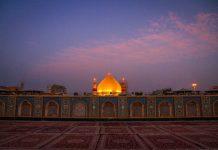امتوں کے زوال کے اسباب اول مظلوم کائنات امیرالمومنین حضرت علی (ع) کی نگاہ میں