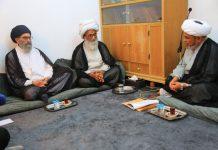 نجف : قائد ملت جعفریہ پاکستان سید ساجد علی نقوی کی آیت اللہ العظمی حافظ بشیر نجفی سے ملاقات