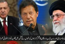 آیت اللہ خامنہ ای اور رجب طیب اردگان کا شکر گزار ہوں کہ انہوں نے کشمیر میں ظلم پر آواز اٹھائی عمران خان
