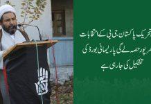 اسلامی تحریک پاکستان جی بی کے انتخابات میں بھر پور حصہ لے گی ، علامہ عارف واحدی