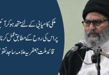 ملکی کامیابی کےلئے متحد ہوکر آئین پر اس کی روح کے مطابق عمل کرنا ہوگا،قائد ملت جعفریہ علامہ ساجد نقوی
