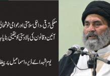 انسانی حقوق و شہری آزادی عوام کا آئینی حق ہے، قائد ملت علامہ ساجد نقوی