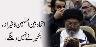 اتحاد بین المسلمین کا شیرازہ بکھیرنے نہیں دینگے ، قائد ملت جعفریہ پاکستان