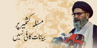 مسئلہ کشمیر پر صرف بیانات کافی نہیں، عملی اقدامات اٹھانا ہونگے، علامہ ساجد نقوی