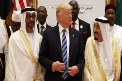 آخر یہ عرب حکمران کس کام کے  تحریر: ثقلین واحدی